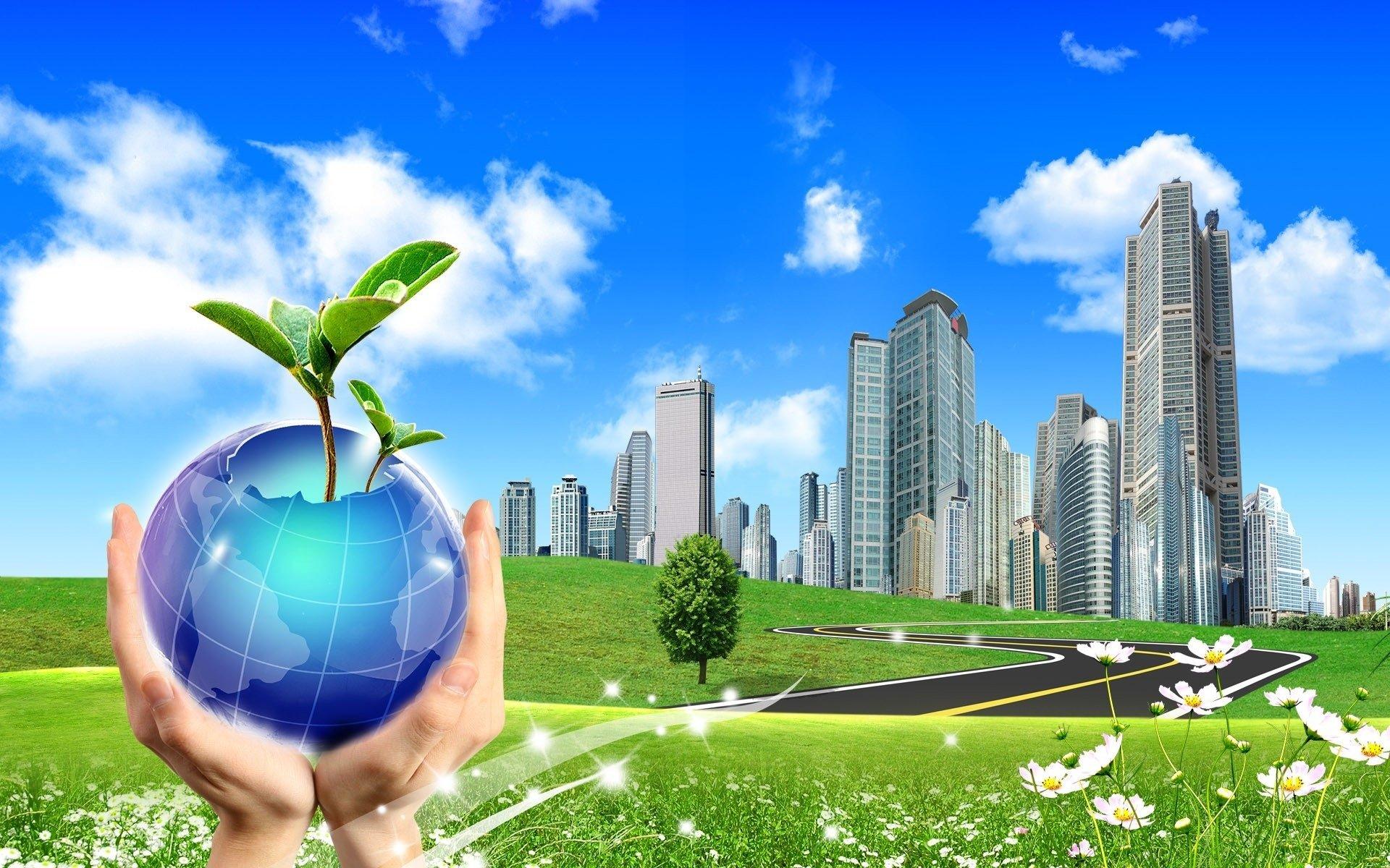 Обучение по охране окружающей среды и обеспечению экологической безопасности